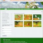 """Presentación página web """"Gestión Integrada de Plagas de Cítricos""""."""